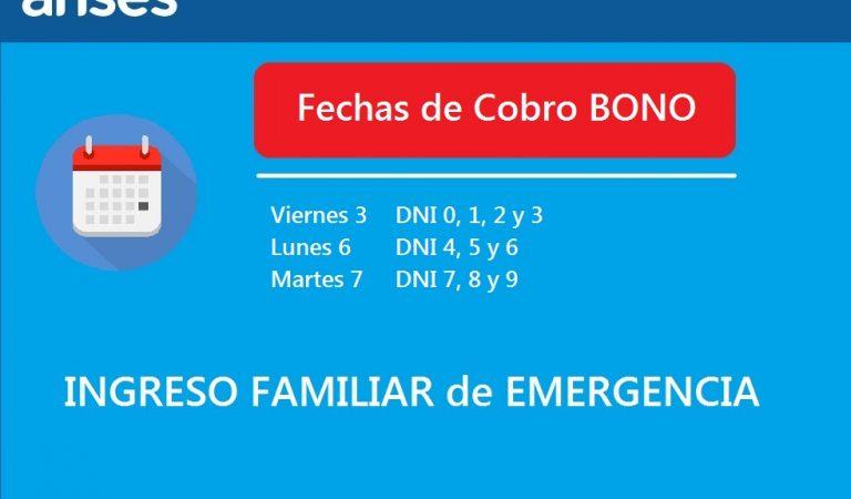 Anses comienza hoy el pago del Ingreso Familiar de Emergencia